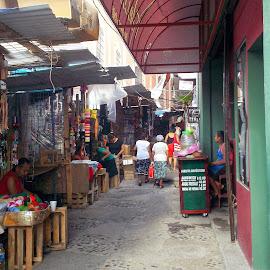 The Market of Papantla by Shane Adams - City,  Street & Park  Markets & Shops ( papantla, market, mexico, travel, bazaar, veracruz, commerce, city )