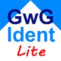 Identifizierung nach GwG