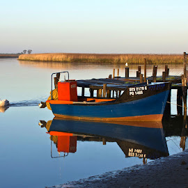 Tranquility by Adéle van Schalkwyk - Transportation Boats ( reflection, anchored, pelicans, jetty, boat, river )