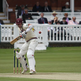 Keeping the eye on the ball by John Davies - Sports & Fitness Cricket ( middlesex ccc, home of cricket, lords, lords cricket ground, somerset ccc,  )