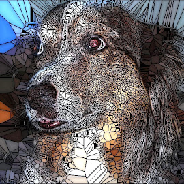 What A Sweet Dog! by Roxanne Dean - Abstract Patterns ( canine, souful, tongue, fur, dog )