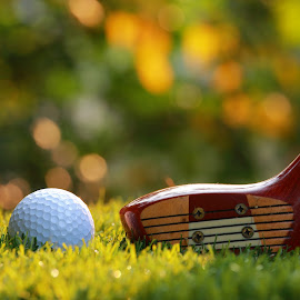 by Prachit Punyapor - Sports & Fitness Golf ( ball, practice, golf, driver, wooden driver )