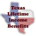HitHoo Texas LIBS icon