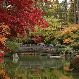Japanese Gardens by Diane Higdem - City,  Street & Park  City Parks ( water, color, spokane, fall, bridge, garden,  )