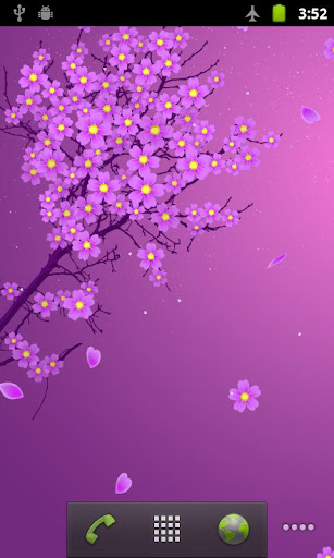 사쿠라 라이브 배경화면 Sakura