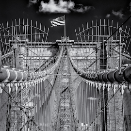 Brooklyn bridge by Richard Depinay - Black & White Buildings & Architecture ( new, flags, national, cables, lock, monument, york, historical, bridge, pont, brooklyn )