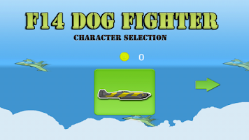 Screenshot of F14 dog fighter