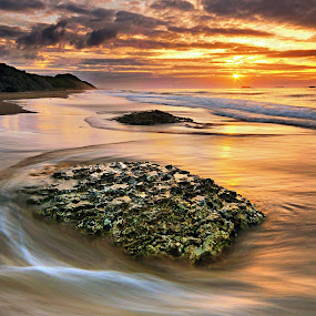 Another one from the White Rocks Beach........as the light and tides is changing. by Leslie Hanthorne - Landscapes Beaches