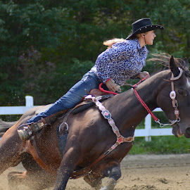 by Karen Nadeau Lester - Sports & Fitness Rodeo/Bull Riding ( gymkhana, barrel racing, barrel racer, horse, cowgirl )
