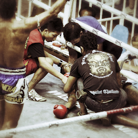 Muay Thai 7 by Bim Bom - Sports & Fitness Boxing ( ring, muay thai, thailand, combat, martial art, boxing, fighter, kickboxing )