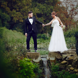 Follow Me by Marius Marcoci - Wedding Bride & Groom ( love, awesome, autumn, forest, bride and groom )