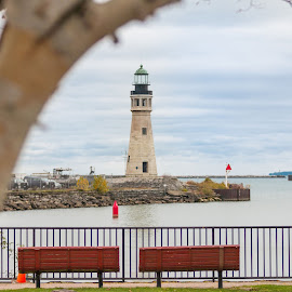 Lighthouse by Michael Wolfe - City,  Street & Park  Historic Districts ( benches, harbor, tree, waterscape, lighthouse, breakwall,  )