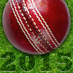 Cricket Fixtures 2015 APK Image