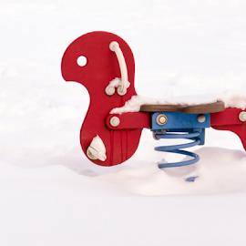 Vinter in the playground by Anitta Lieko - City,  Street & Park  Neighborhoods ( playpround, red, toy, horse, snow )
