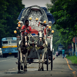by Nikhilesh Das - City,  Street & Park  Street Scenes