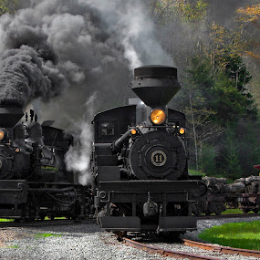 Family Line by Chuck  Gordon  - Transportation Trains ( cass, shay, railroad, track, steam trains, smoke )