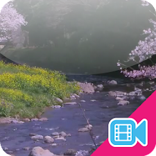 Spring River Live WallPaper