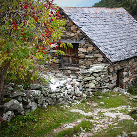 Peaceful Hideaway by Lisa Klein - Buildings & Architecture Other Exteriors ( countryside, old, exterior, slate, stone, rock, house, architecture, french, leaves, rustic, hiking, alpine, refuge, ecrins, nature, autumn, serenity, mountaineering, hideaway, excursion, quiet, slate roof, roof, european, window, serene, outdoors, day, french alps, outside, abandoned, europe, mountain village, colorful, beauty, landscape, idyllic, france, rocks, alps, water, building, peaceful, green, beautiful, background, fall, outdoor, isere, stone building, stones, chalet, hike )