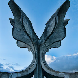 Jasenovac by Marko Čolić - Buildings & Architecture Statues & Monuments ( world war ii, monument, jasenovac )