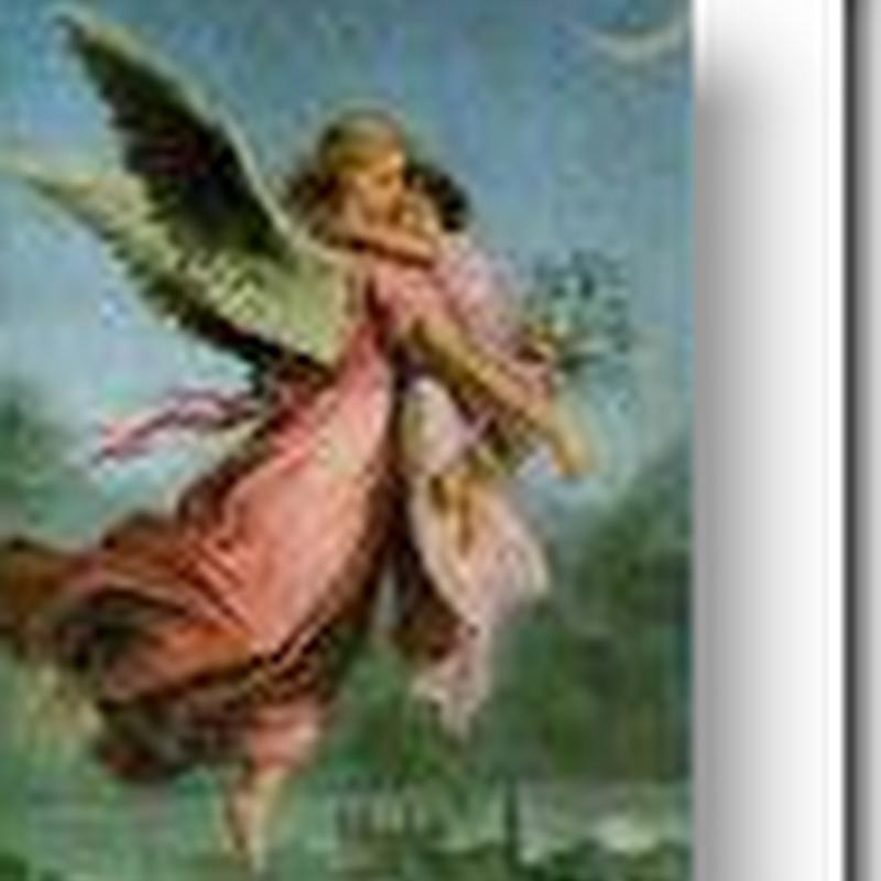 Small Plane Crash in Massachusetts - Angel Flights