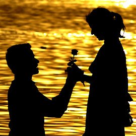 Will you marry me? by Prabhat Verma - People Couples