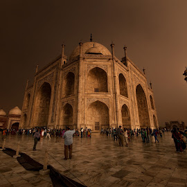 Taj Mahal by Dimitar Pavlov - Buildings & Architecture Places of Worship ( taj mahal, india )