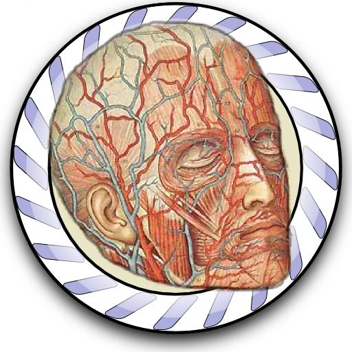 Speed Angiology MD LOGO-APP點子