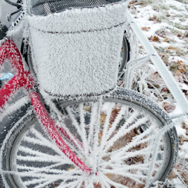 Icy bike by Anitta Lieko - Transportation Bicycles