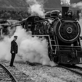 steam train by Angel Tebelin - Transportation Trains