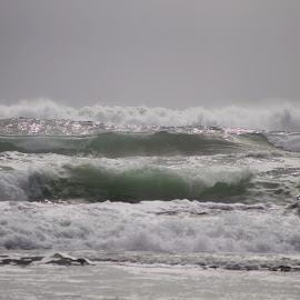 Piha Beach Auckland NZ by Farhad Malikzad - Landscapes Beaches ( surf beach, dangerou beach, water activity, piha beach nz )