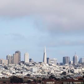 San Francisco Skyline by Ginger Wlasuk - City,  Street & Park  Skylines ( skyline, california, city by the bay, san francisco, city skyline )