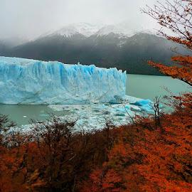 Puerto Moreno, Argentina by Tyrell Heaton - Landscapes Travel ( argentina, puerto moreno )