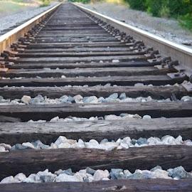 Railroad by Michael Garrison - Novices Only Landscapes ( railroad, rocks )