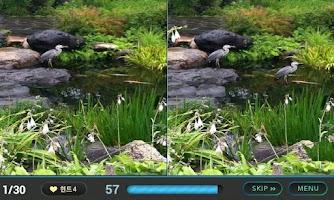 Screenshot of Find the wrong -hidden catch
