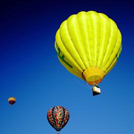 by Cuyler Thiesfeldt - Transportation Other ( rides, festivals, transportation, hot air balloons, balloons )