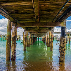 Russel Jetty by Jodi Bilske - Buildings & Architecture Bridges & Suspended Structures ( water, boats, beach, jetty, new zealand )