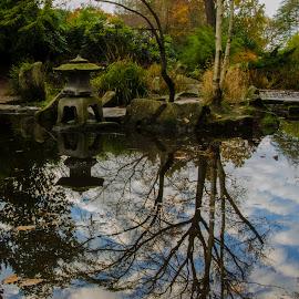Reflection by Audra Kolcina - City,  Street & Park  City Parks
