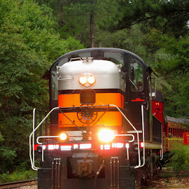 train by Ann King - Transportation Trains ( engine, railroad, train, transportation, photography )