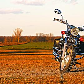 Kymco Venox 250i by Kiss Balázs - Transportation Motorcycles