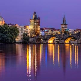 Charles Bridge, Prague by Petr Kubat - City,  Street & Park  Night ( water, lights, reflection, night, bridge, charles, dusk, prague, river, Urban, City, Lifestyle )