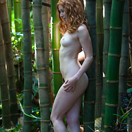 Sara by Sandy Friedkin - Nudes & Boudoir Artistic Nude ( natural light, nude, woman, beautiful, bamboo garden, red head )