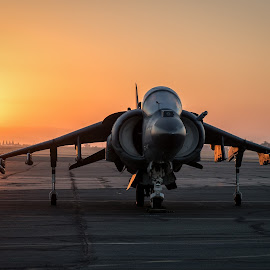 AV-8B Harrier Sunrise by Brent Clark - Transportation Airplanes ( aviation, airplane, av-8b, sunrise, transportation, jet, harrier )