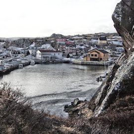 Quidi Vidi Village by Mick Cook - Buildings & Architecture Homes ( water, hills, houses, village, rock )