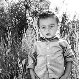 TK 2014 #2 by Stacey Cannon - Babies & Children Child Portraits ( fall, boys, cute, handsome, portrait )