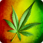 Marihuana and Weed Wallpapers APK for iPhone