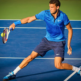 Grigor Dimitrov by David Freese - Sports & Fitness Tennis ( tennis, us open, grigor dimitrov )