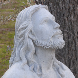 Jesus by Nita Andrews - Artistic Objects Other Objects ( statue, tree, grass, jesus, concrete )