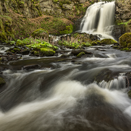 Motion by Peter Samuelsson - Nature Up Close Water