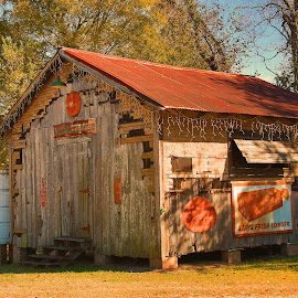 Louisiana Cajun shed by Ron Olivier - Buildings & Architecture Decaying & Abandoned ( louisiana cajun shed )