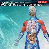 Anatomy & Physiology-Animated APK for Ubuntu